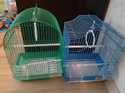 Птенцы волнистые