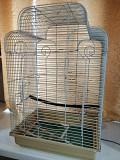 Попугаи неразлучники с клеткой.
