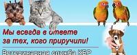 Ветеринарная служба КБР